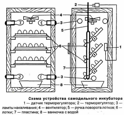 Инкубатор своими руками устройство 279